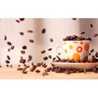 """СП """"Галка Лтд"""" - найбільший імпортер кавового зерна в Україні!"""